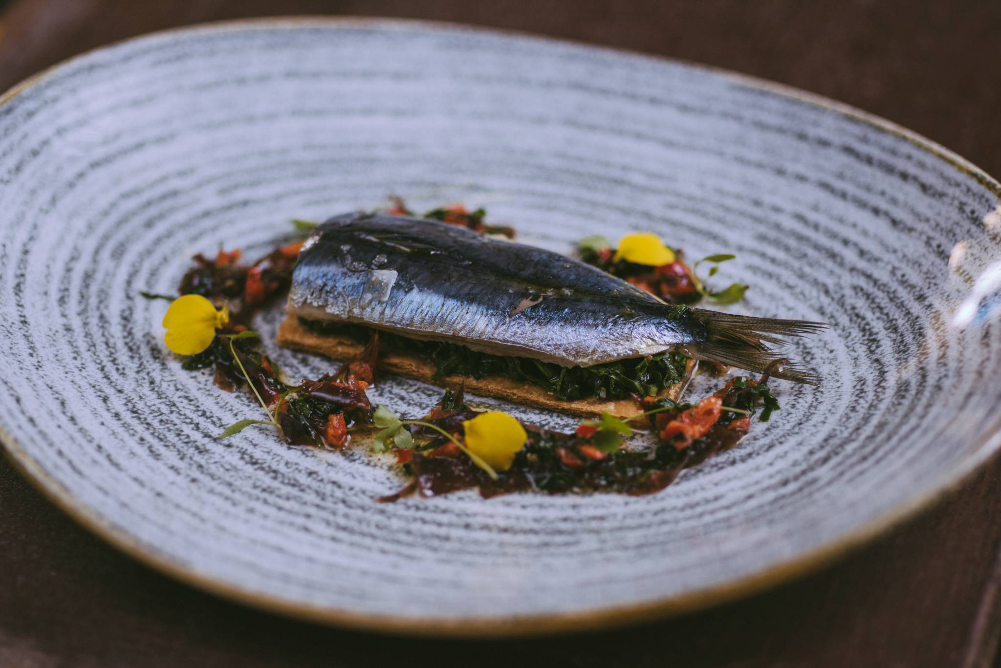 Sardine-Tart-with-a-Seaweed-Salad