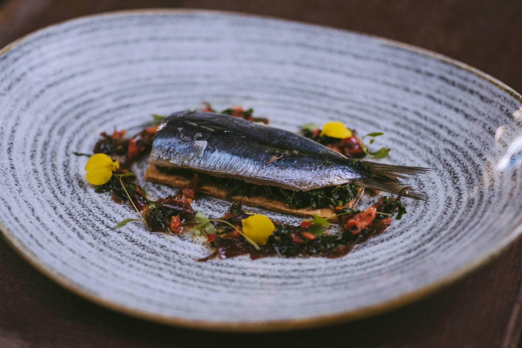 Sardine-Tart-with-a-Seaweed-Salad